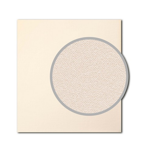 Cardstock (305х310mm - 280gsm) Eggshell, Cream (5 Sheet Set) (clr 50)