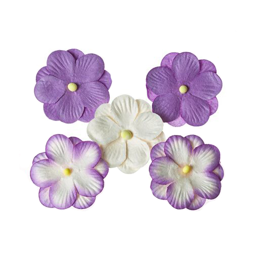 Pansies, a set of double flowers 5 pieces, purple