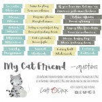 Die-cuts My Cat Friend, 16xENG quotes , cut-out, 190 gsm (PL on the back)
