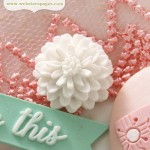 PomPoms Cameo Set – White (10 pieces per pack) (clr 90)