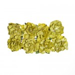 Paper Flowers Clove Green (8 Pieces Per Pack) (clr 50)