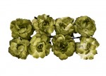 Paper Flowers - Curly Rose – Green (8 Pieces Per Pack) (clr 50)